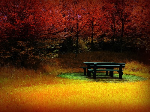 photography-wallpapers-free-tranquility-of-autumn-wallpaper